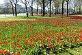 Natuur Breda P1360730.jpg