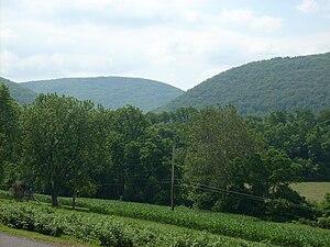 Nippenose Township, Lycoming County, Pennsylvania - A Nippenose Township vista
