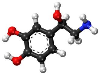 Norepinephrine - Image: Norepinephrine ball and stick model