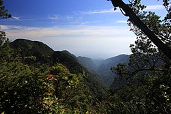 North-east view over forest valley from Gunung Salak 1 Halimun Salak National Park.jpg
