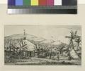 Nouvelle Calédonie - grande case indigène sur le chemin de ballade à Poepo (NYPL b13493718-1105573).tiff