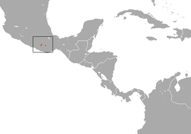 Oaxacan Broad-clawed Shrew area.png