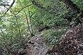 Ohiopyle State Park River Trail - panoramio (16).jpg