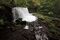 Oirase Stream Waterfall 銚子大滝(ちょうしおおたき).jpg