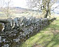 Old Stone Wall - geograph.org.uk - 354220.jpg