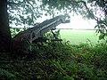 Old farm machinery - geograph.org.uk - 256627.jpg
