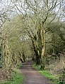 Old railway line out of Tetbury - March 2012 - panoramio.jpg