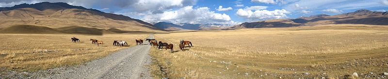 Fájl:On the way to Naryn, Kyrgyzstan.jpg