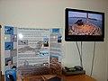 Osprey Nest Video Feed (6330222907).jpg