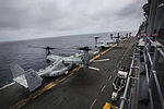 Ospreys take over 150318-M-JT438-185.jpg