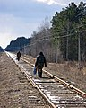 Ovruts'kyi district, Zhytomyrs'ka oblast, Ukraine - panoramio.jpg