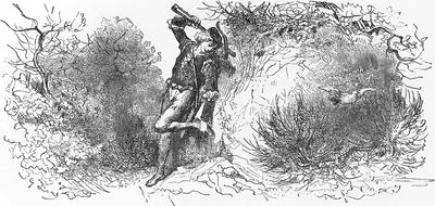 Gołąb I Mrówka Wikiźródła Wolna Biblioteka