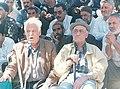Pahlavan Sakhdari And Pahlavan Shourvarzi At Hajjiabad.jpg