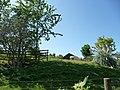 Paignton , Paignton Zoo, Bongo Enclosure - geograph.org.uk - 1483764.jpg