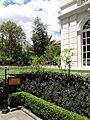 Palacio Gangotena, Quito (interior) pic bbb2.JPG