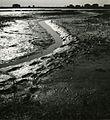 Paolo Monti - Serie fotografica (Chioggia, 1949) - BEIC 6342953.jpg