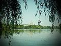 Parcul Herastrau (9463438483).jpg