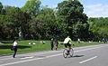 Park Drive, Central Park (7174937562).jpg