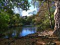 Parque De La Reina, Invercargill, Nueva Zelanda - panoramio (3).jpg