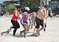 Participants of a beach boot camp class drag a heavy rope through the sand on Soundside Beach at Hurlburt Field, Fla., May 18, 2013 130518-F-RS318-046.jpg