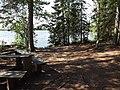 Pausplats skogsudde Savojärvileden 2019.jpg