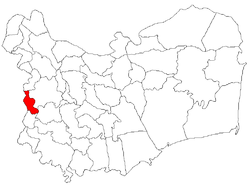 Location of Peceneaga
