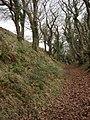 Penstowe Castle near Kilkhampton - geograph.org.uk - 643857.jpg