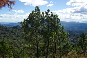 Morazán Department - Image: Perkin 4036
