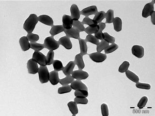 Betabaculovirus genus of viruses
