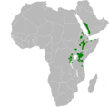 Phylloscopus umbrovirens distribution map.png