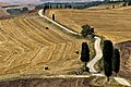 Pienza, Podere Terrapille (41775175370).jpg