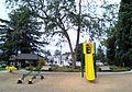 Play equipment at Bagley Park - Hillsboro, Oregon.jpg