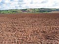 Ploughed and ready for the next crop - geograph.org.uk - 545643.jpg