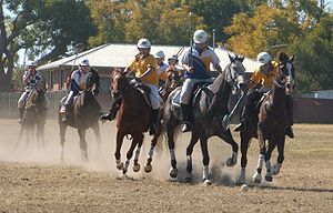 Polocrosse - Playing polocrosse in New South Wales, Australia - Photo - Andrew Muir No.1 Attack - Quirindi Club Final