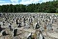 Pomnik Ofiar Obozu Zagłady w Treblince 2017h.jpg