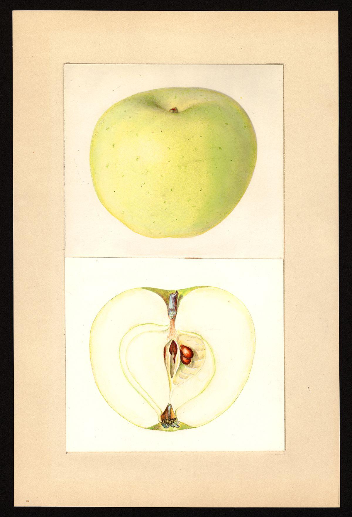 Applesauce Old Fruit Cake