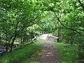 Pont Rhyd-y-cnau - geograph.org.uk - 82043.jpg