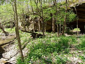 Portland Arch Nature Preserve - Image: Portland Arch NNL Fountain County Indiana