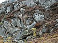 Poulouriscraig Rocks - panoramio.jpg