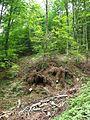 Povlen - Srednji Povlen - reka Cetina 2.jpg