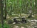 Près du parking du Faîte (forêt de Montmorency) - panoramio.jpg