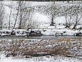 Prato-02,02,2012-Bisenzio con neve 12.jpg