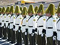 Presidential Guards Await Arrival of Mexican President Fox - La Paz - Bolivia (3777003184).jpg
