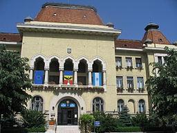 Primaria Targu Mures.jpg
