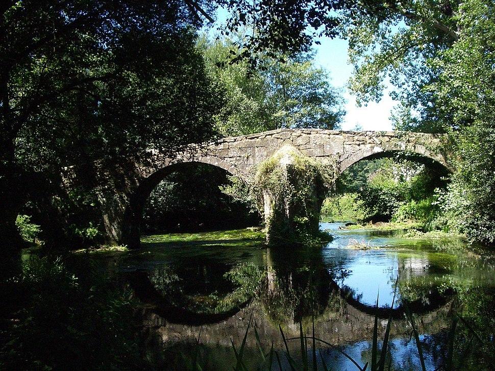 ルビアンス古橋