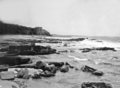 Queensland State Archives 1120 Alexander Headland looking North December 1930.png