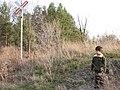 Rail Crossing, Levi Creek (324951445).jpg