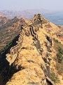 Rajgad-Fort-Top.jpg