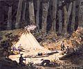 Rangiora bush, 6 December 1850.jpg