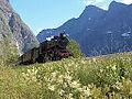 Raumabanen train.jpg